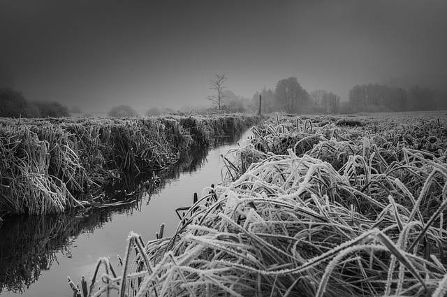 В Рязанской области ожидается туман и мокрый снег