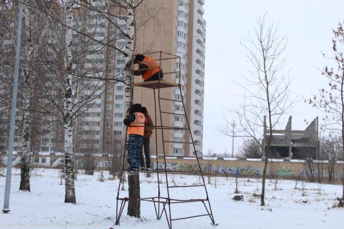 Комсомольский парк Рязани украсили праздничная иллюминация и новогодняя ёлка