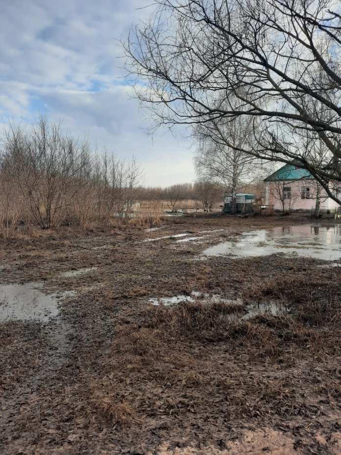 В двух районах Рязанской области уровень воды начал снижаться