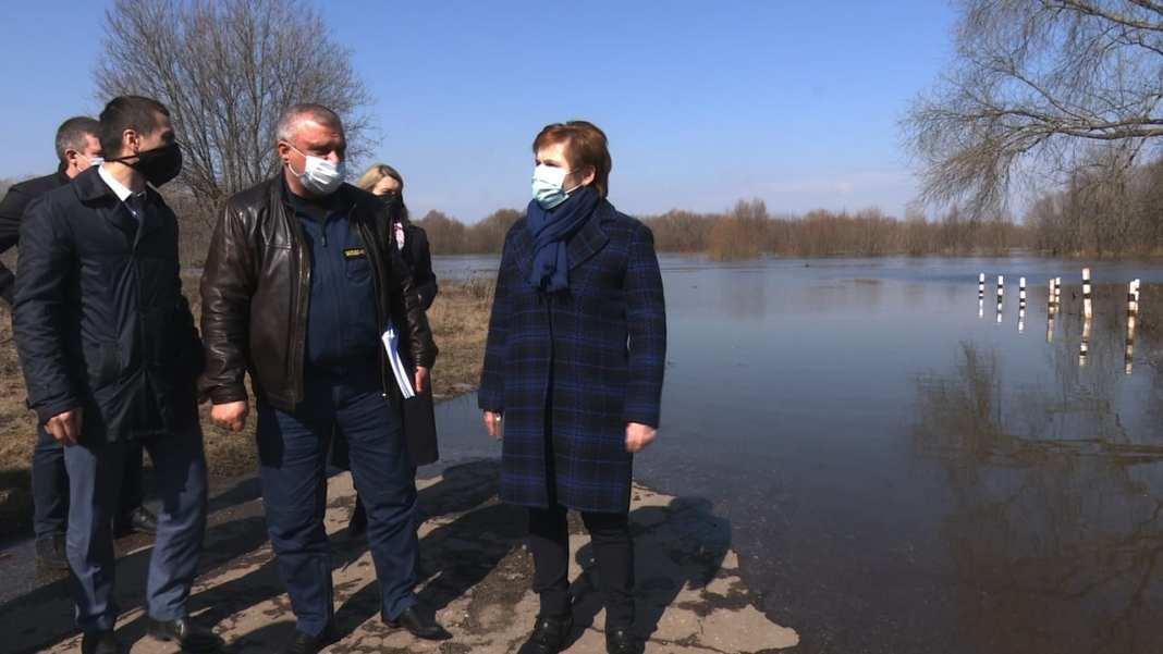 Елена Сорокина рассказала о плане действий в случае подтопления Борок
