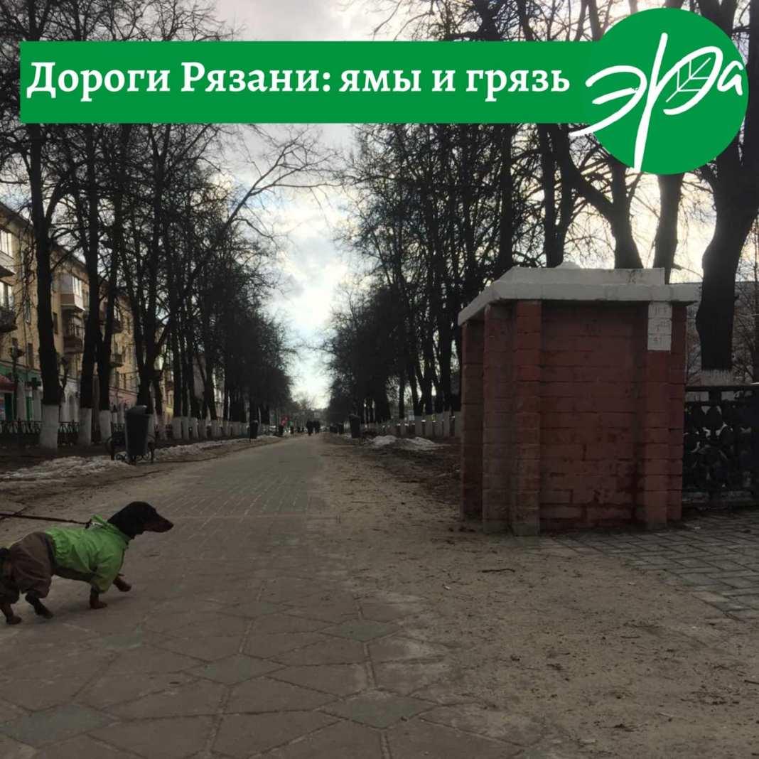 Экоактивисты назвали причину грязи и пыли на улицах Рязани
