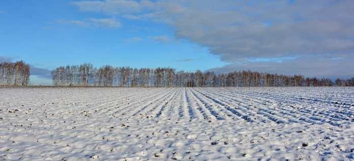 Рязанские аграрии готовы к проведению весенних полевых работ