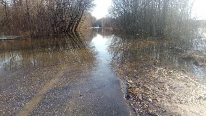 В Лесопарке Рязани затопило дорогу