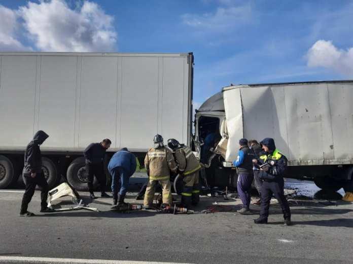 Один человек погиб в результате столкновения двух грузовиков в Михайловском районе