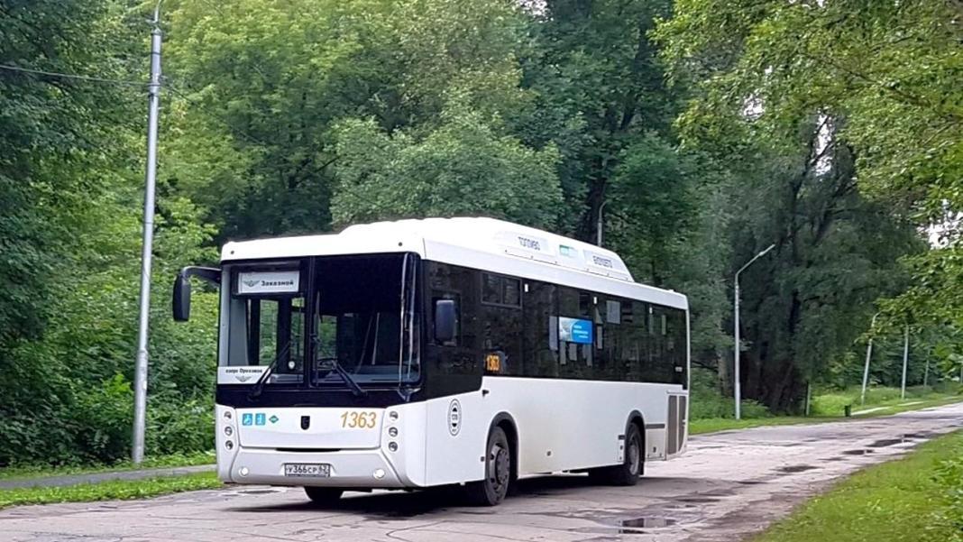 Автобус до Орехового озера