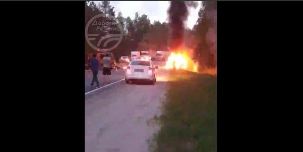 Автомобиль сбил лося и загорелся в Рязанской области