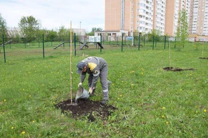100 саженцев липы, рябины и дуба высадили работники Рязанской НПК в Московском районе города