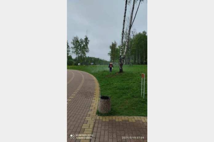 Парк Соловьиная роща в Смоленске обрабатывают от клещей
