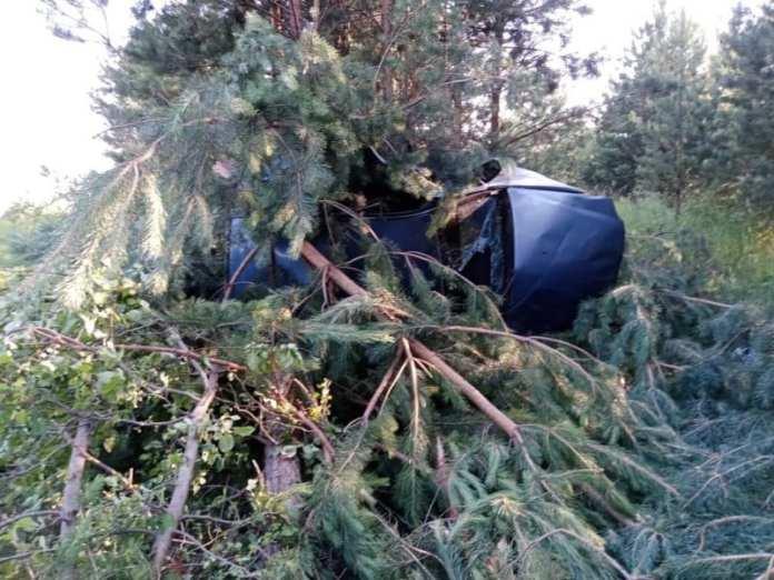 """52-летний мужчина погиб после опрокидывания """"Рено"""" в Ермишинском районе"""