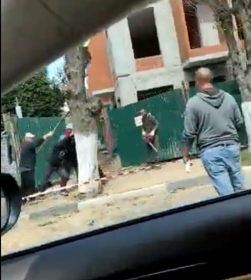 В центре Рязани ломают дерево