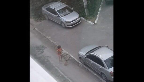 Девочка избила и бросила на асфальт щенка в Новомичуринске