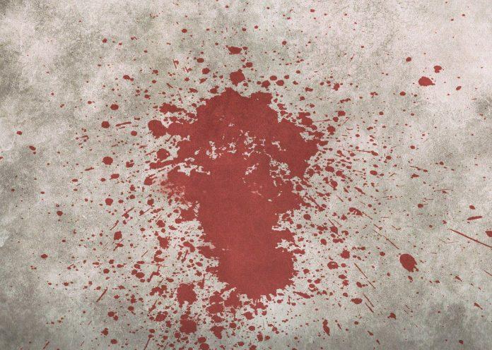 В Подмосковье мать и дочь заподозрили в убийстве мужчины
