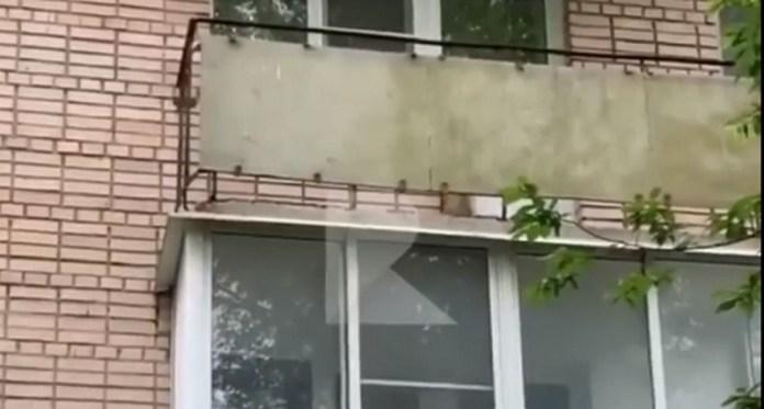 Рязанка пожаловалась на хозяев, закрывающих пса на балконе
