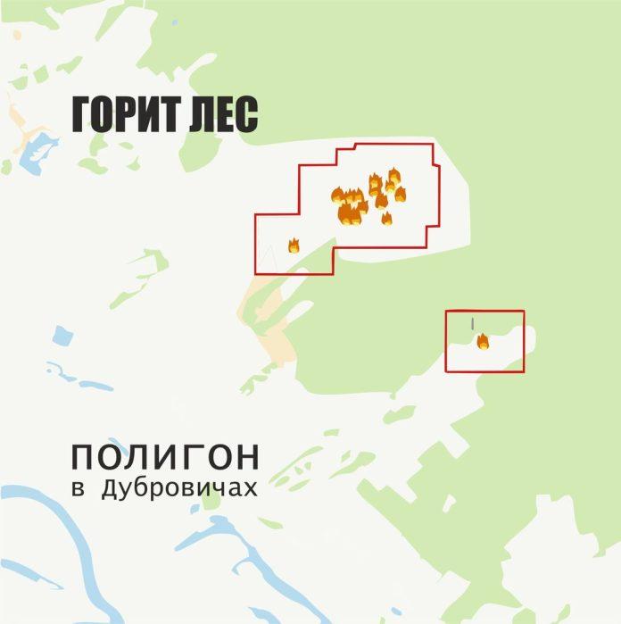 В Рязани горел лес возле полигона в Дубровичах