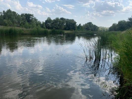 11-летние девочки-близняшки утонули в Волгоградской области