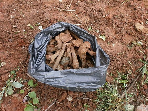 В Кировской области культурно-досуговый центр строят на костях