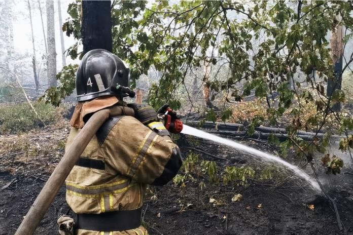 Рязанские пожарные продолжают тушить природный пожар в Нижегородской области