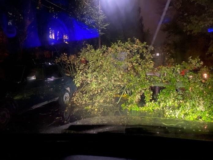В Приокском в Рязани дерево упало на автомобили