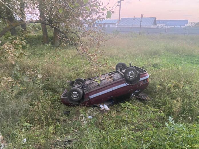 В Тамбовской области пьяный водитель сбил насмерть девочку