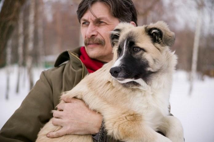 Несколько важных правил для владельцев домашних животных