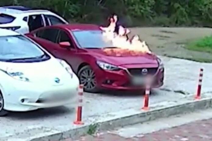 Брат с сестрой подожгли автомобиль с ребёнком внутри