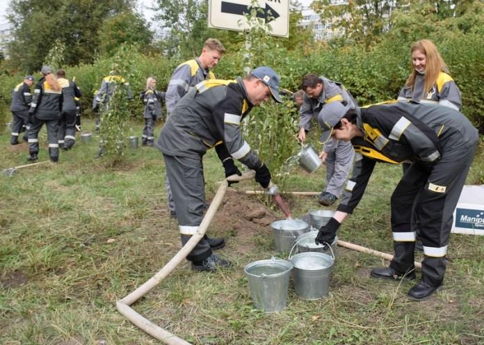 Работники Рязанской НПК высадили на улице Зубковой пирамидальные тополя