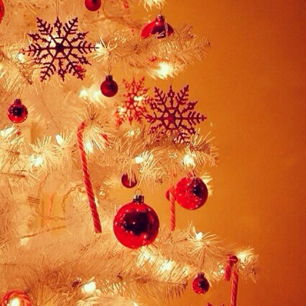 صور عيد المجيد احتفالات المسيحيين بعيد الكريسماس حلوه خيال
