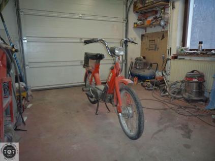 Rat_moped-2