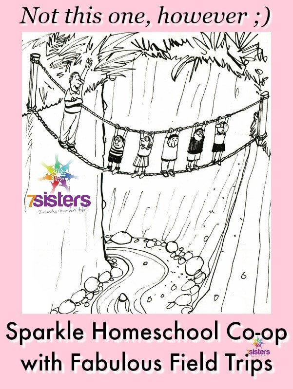 Sparkle Your Homeschool Co-op with Fabulous Field Trips