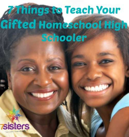7 Things to Teach Your Gifted Homeschool High School ...