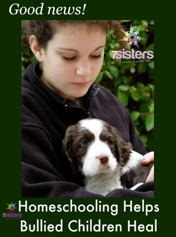 Homeschooling Helps Bullied Children Heal