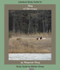 Misty literature study guide from 7SistersHomeschool.com