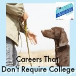 HSHSP Ep 186_ Careers that Don't Require College