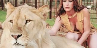 Imagen del león Simba