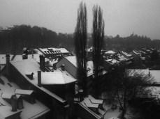 Berna cubierta de nieve © Nerea Serrano.