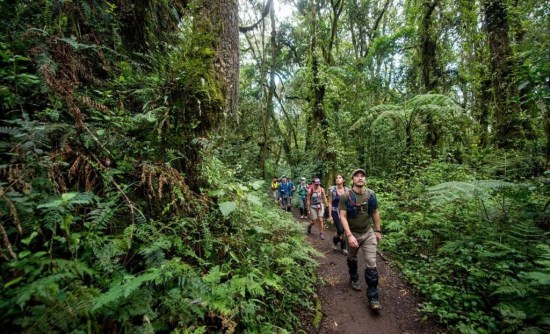 Kilimanjaro-Trekking-2.jpg