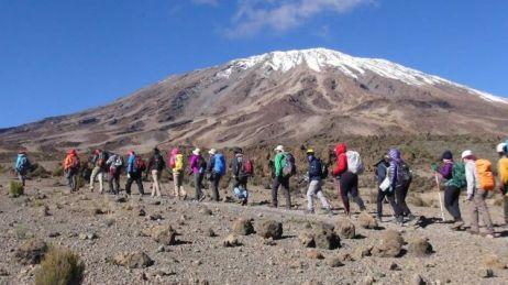 kilimanjaro-climb-lemosho-route-tour