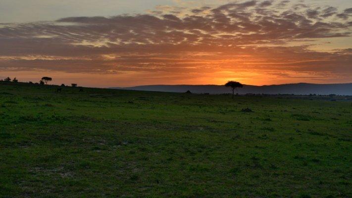 sunrise-in-maasai-mara-national-reserve-kenya