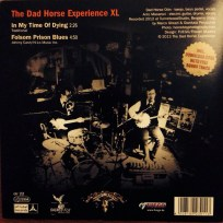 The Dad Horse Experience XL - In My Time Of Dying / Folsom Prison Blues | Back