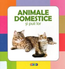 Animale domestice si puii lor 988409 web