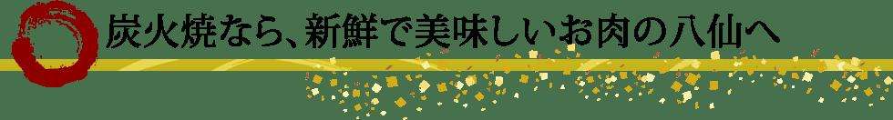 塩ジンギスカン八仙大通(当店に系列はありません)