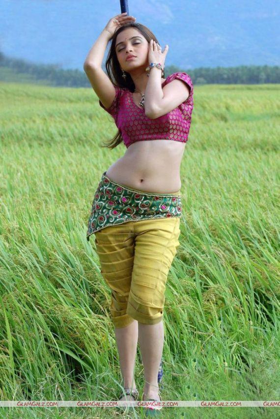 First Look - Sheena Shahabadi