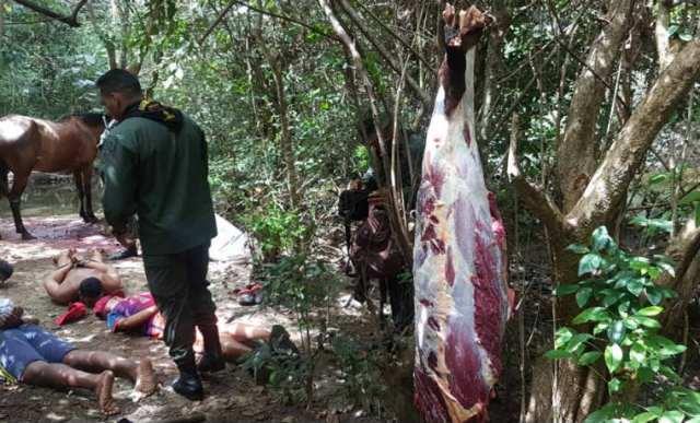 Cuatro hombres detenidos por vender caballos como carne de res