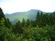 Mountain-View-1