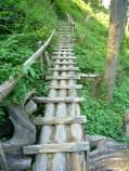 Shaky-Bridge