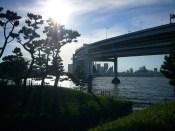 Sunny-Bridge-from-Daiba-Park