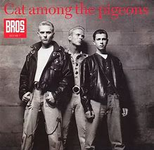 cat-among-the-pigeons-bros