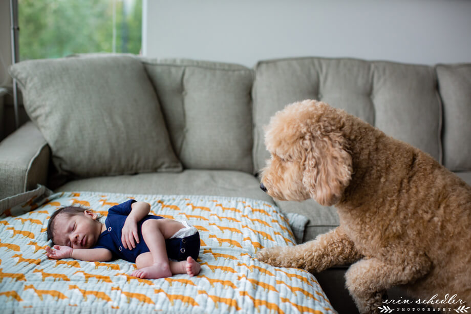 seattle_lifestyle_newborn_photography009