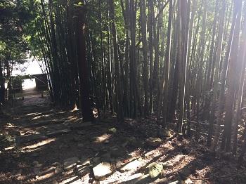 四国別格第1番大山寺