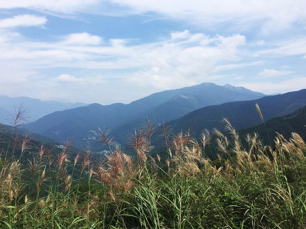 高知の京柱峠